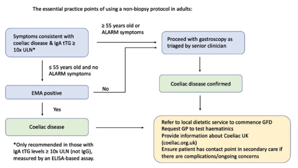 Figure 3. Diagram of the non-biopsy approach in adults from the BSG interim guidance (Penny et al. 2020)